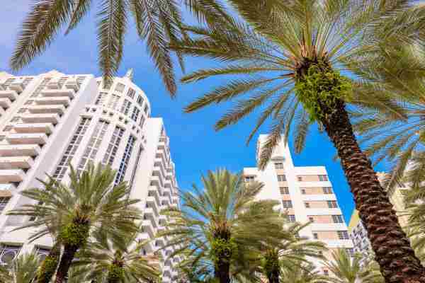 Miami Law Firms are Building Partnership with Foreign Firms