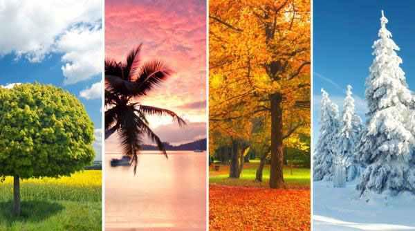 Economic Seasons